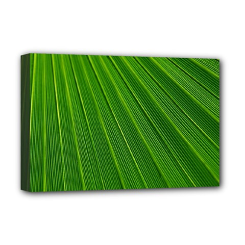 Green Lines Macro Pattern Deluxe Canvas 18  X 12   by Amaryn4rt