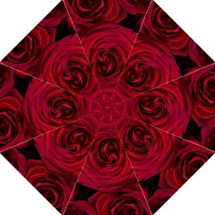 Roses Flowers Red Forest Bloom Golf Umbrellas