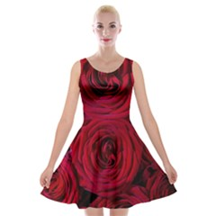 Roses Flowers Red Forest Bloom Velvet Skater Dress by Amaryn4rt