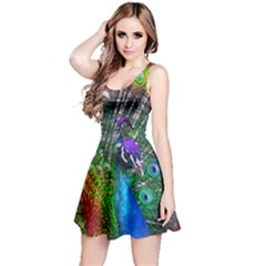 3d Peacock Pattern Reversible Sleeveless Dress