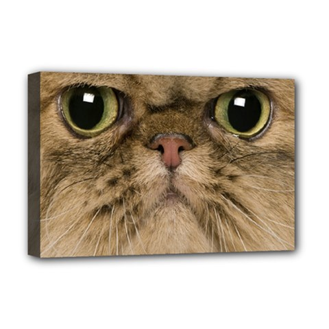 Cute Persian Cat Face In Closeup Deluxe Canvas 18  X 12   by Amaryn4rt
