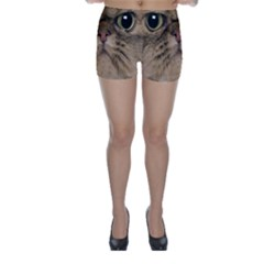 Cute Persian Cat Face In Closeup Skinny Shorts by Amaryn4rt