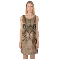 Cute Persian Cat Face In Closeup Sleeveless Satin Nightdress by Amaryn4rt