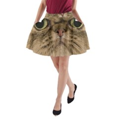 Cute Persian Cat Face In Closeup A Line Pocket Skirt by Amaryn4rt