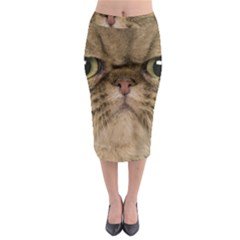 Cute Persian Cat Face In Closeup Midi Pencil Skirt by Amaryn4rt