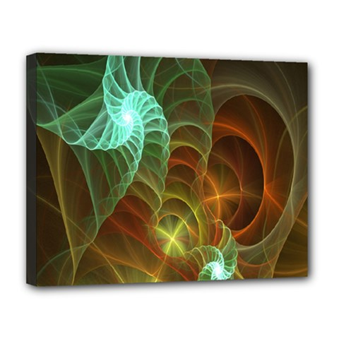 Art Shell Spirals Texture Canvas 14  X 11  by Simbadda