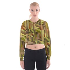Earth Tones Geometric Shapes Unique Women s Cropped Sweatshirt by Simbadda