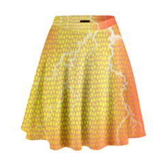 Exotic Backgrounds High Waist Skirt by Simbadda