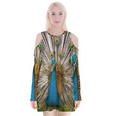Indian Peacock Plumage Velvet Long Sleeve Shoulder Cutout Dress by Simbadda