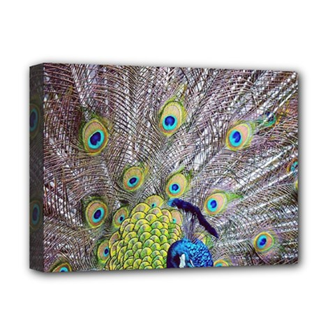 Peacock Bird Feathers Deluxe Canvas 16  X 12   by Simbadda