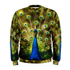 Peacock Bird Men s Sweatshirt by Simbadda