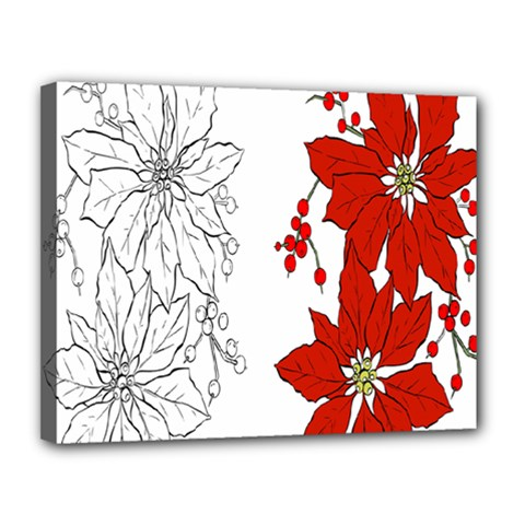 Poinsettia Flower Coloring Page Canvas 14  X 11  by Simbadda