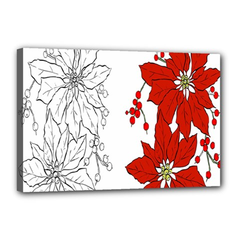 Poinsettia Flower Coloring Page Canvas 18  X 12  by Simbadda