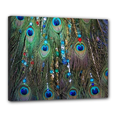 Peacock Jewelery Canvas 20  X 16  by Simbadda
