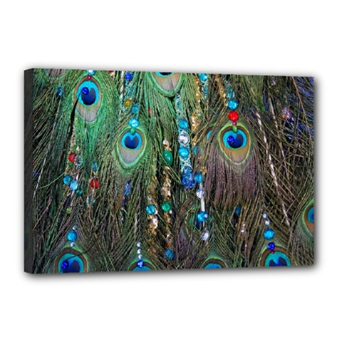 Peacock Jewelery Canvas 18  X 12  by Simbadda