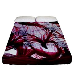 Jellyfish Ballet Wind Fitted Sheet (king Size) by Simbadda