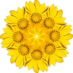 Transparent Flower Summer Yellow Golf Umbrellas by Simbadda