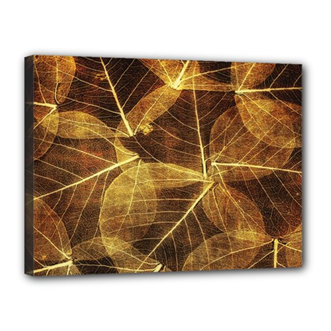 Leaves Autumn Texture Brown Canvas 16  X 12  by Simbadda