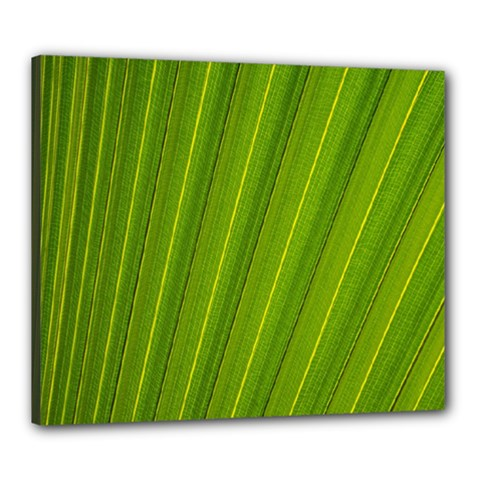 Green Leaf Pattern Plant Canvas 24  X 20  by Onesevenart