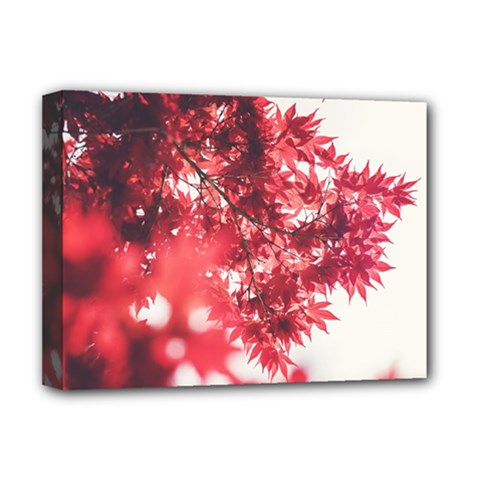Maple Leaves Red Autumn Fall Deluxe Canvas 16  X 12   by Onesevenart