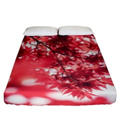 Maple Leaves Red Autumn Fall Fitted Sheet (king Size) by Onesevenart