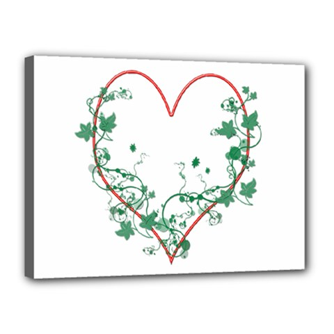 Heart Ranke Nature Romance Plant Canvas 16  X 12  by Simbadda