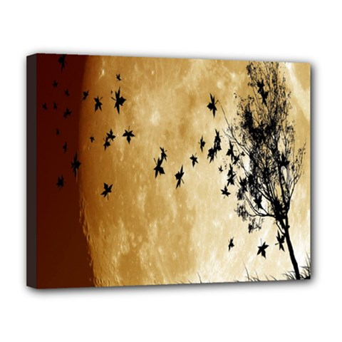 Birds Sky Planet Moon Shadow Canvas 14  X 11  by Simbadda