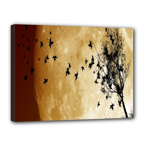 Birds Sky Planet Moon Shadow Canvas 16  X 12  by Simbadda