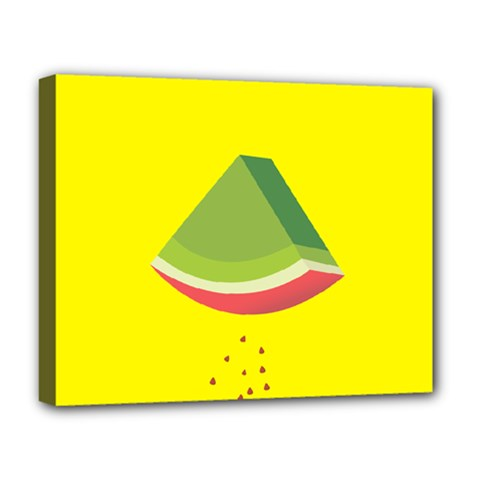 Fruit Melon Sweet Yellow Green White Red Deluxe Canvas 20  X 16   by Alisyart