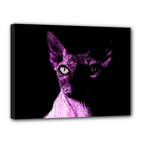Pink Sphynx Cat Canvas 16  X 12  by Valentinaart