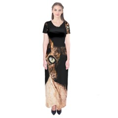 Sphynx Cat Short Sleeve Maxi Dress by Valentinaart