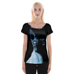 Blue Sphynx Cat Women s Cap Sleeve Top by Valentinaart