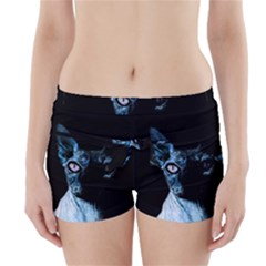 Blue Sphynx Cat Boyleg Bikini Wrap Bottoms by Valentinaart