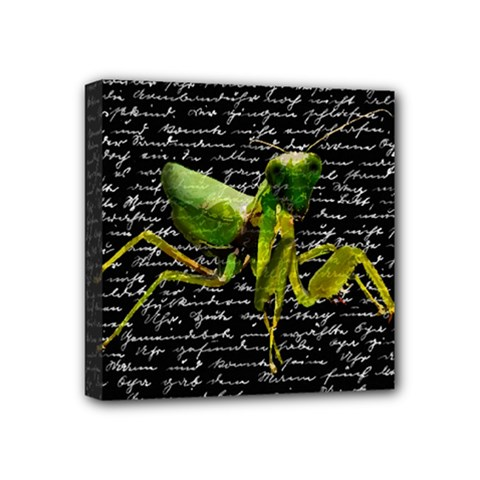 Mantis Mini Canvas 4  X 4  by Valentinaart