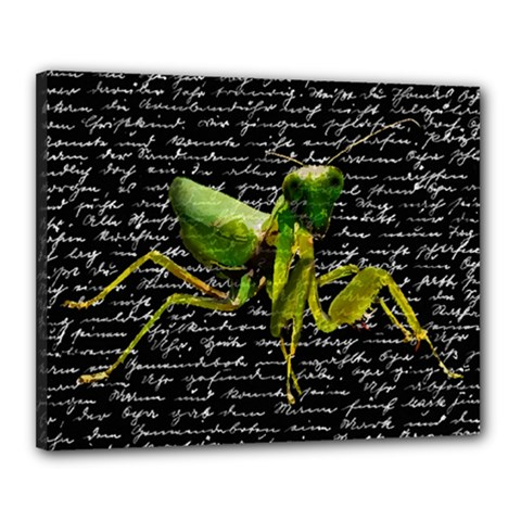 Mantis Canvas 20  X 16  by Valentinaart