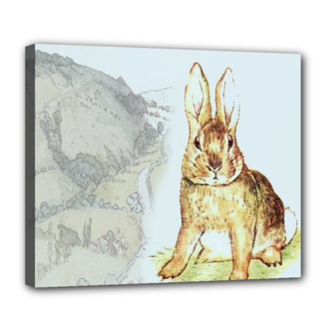 Rabbit  Deluxe Canvas 24  X 20   by Valentinaart