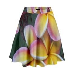 Premier Mix Flower High Waist Skirt by alohaA