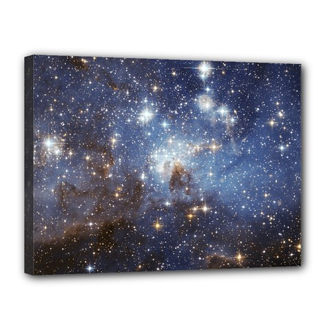 Large Magellanic Cloud Canvas 16  X 12  by SpaceShop