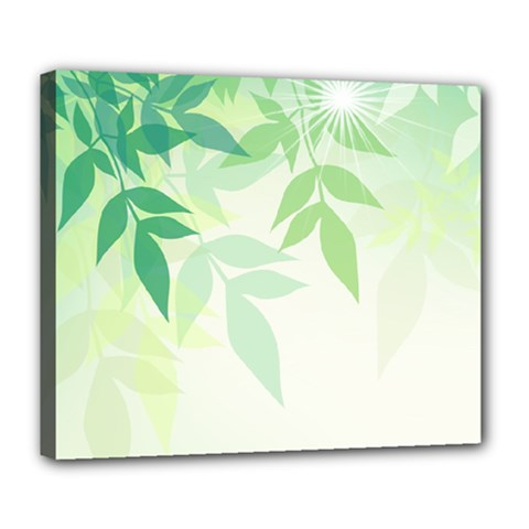 Spring Leaves Nature Light Deluxe Canvas 24  X 20   by Simbadda