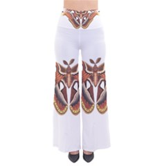 Butterfly Animal Insect Isolated Pants by Simbadda