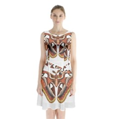 Butterfly Animal Insect Isolated Sleeveless Chiffon Waist Tie Dress