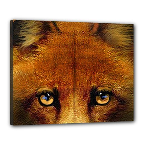 Fox Canvas 20  X 16  by Simbadda