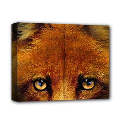 Fox Deluxe Canvas 14  X 11  by Simbadda