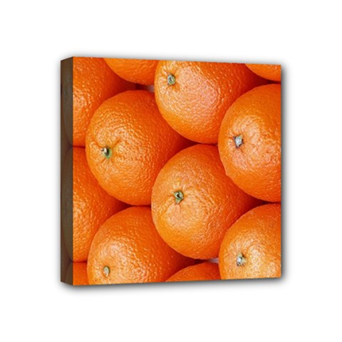 Orange Fruit Mini Canvas 4  X 4  by Simbadda