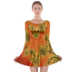 Decorative Fractal Spiral Long Sleeve Skater Dress