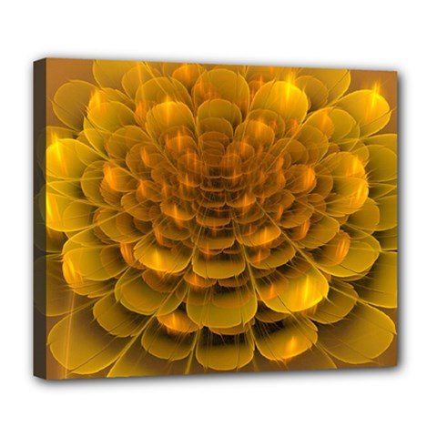 Yellow Flower Deluxe Canvas 24  X 20   by Simbadda