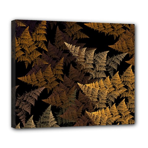 Fractal Fern Deluxe Canvas 24  X 20   by Simbadda