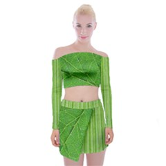 Fairy Off Shoulder Top With Skirt Set