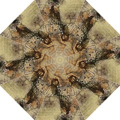 Vintage Owl Folding Umbrellas by Valentinaart