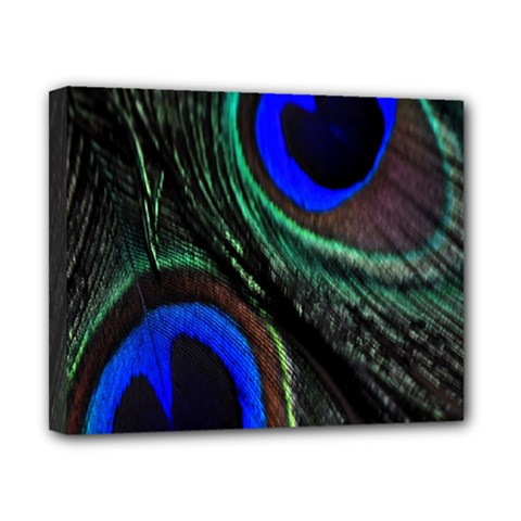 Peacock Feather Canvas 10  X 8  by Simbadda
